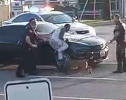 El fuerte video que muestra cómo policías usaron un perro para atacar a una persona durante su detención