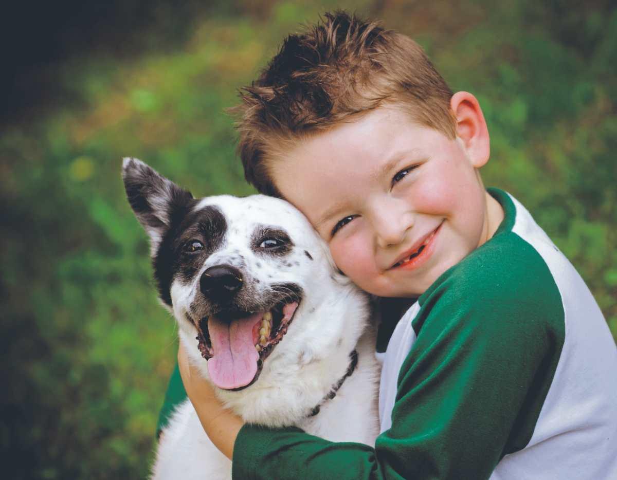 Cómo enseñar a los niños respeto por los animales