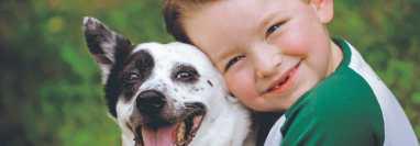 Padres y adultos en el hogar deben enseñar  con el ejemplo respeto  y empatía hacia los animales domésticos que convivan con la familia. (Foto Prensa Libre, Shutterstock)