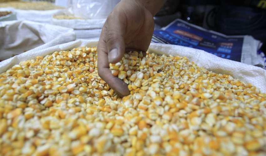 La industria de alimentos y bebidas del país depende de materias primas como el maíz para sus productos. (Foto Prensa Libre: Hemeroteca)