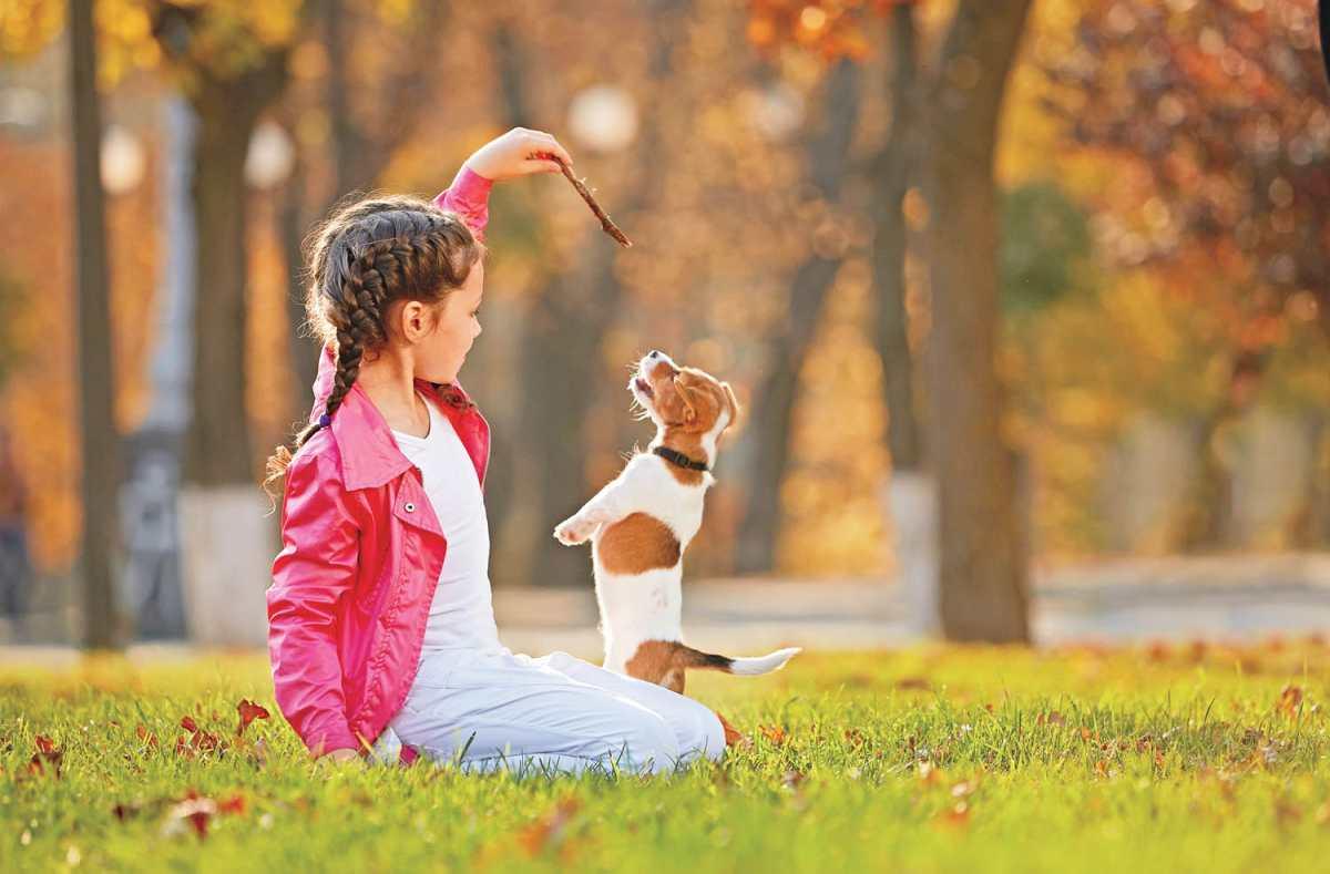 Niños y mascotas: conexión especial
